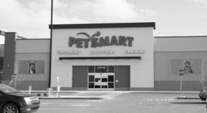 petsmart commercial electrical